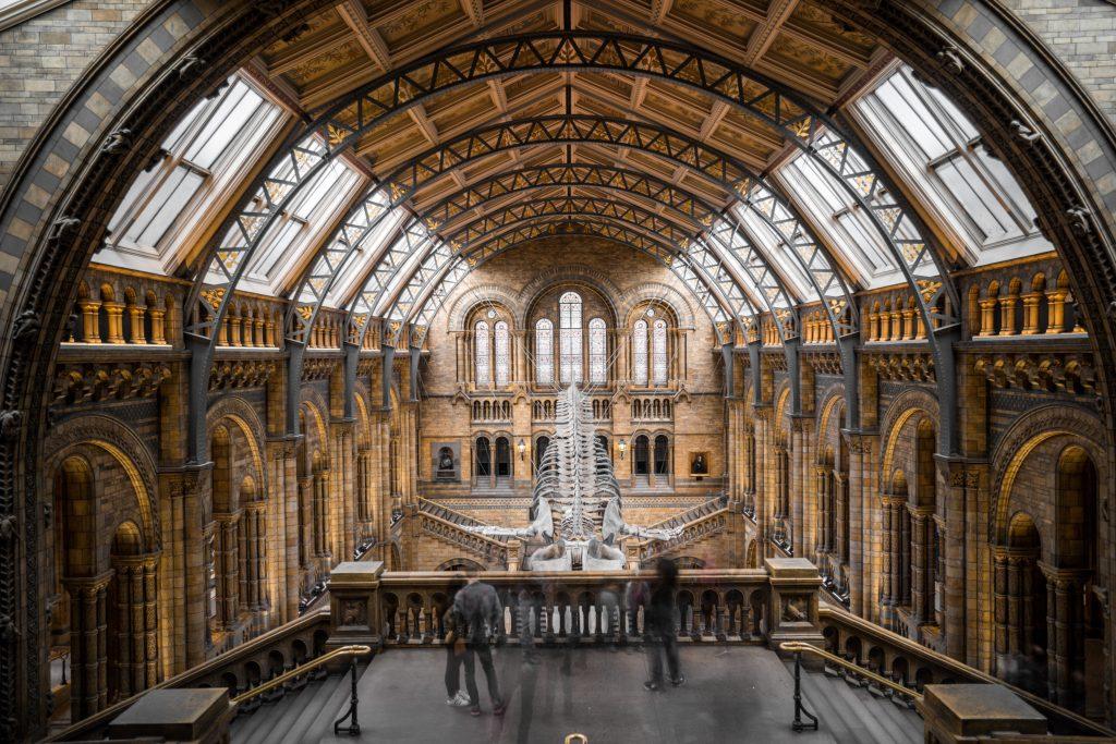 prírodovedné múzeum v Londýne