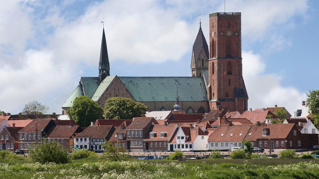 Katedrála Ribe, Dánsko